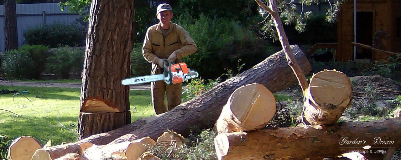 Удаление и валка деревьев